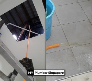 plumber singapore recommend