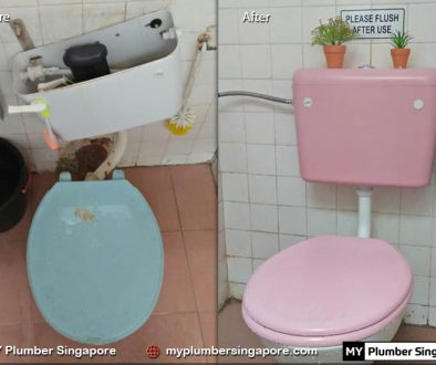 recommended plumber singapore