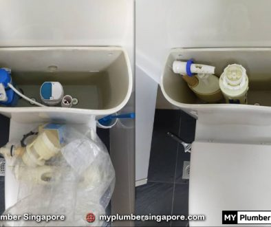 plumber service singapore cost